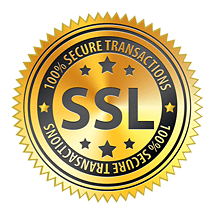 SSL-security-seal[1]